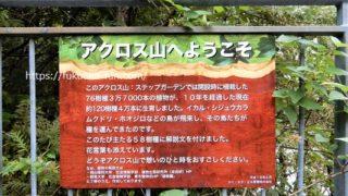 福岡 アクロス山