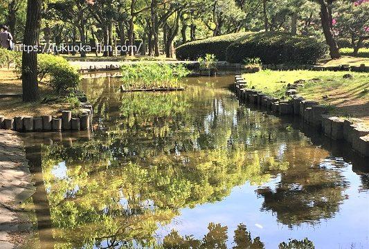福岡 のんびりできる公園