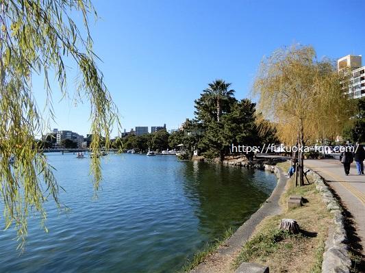 福岡 公園 おすすめ