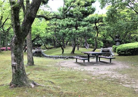 公園 ベンチが多い 福岡
