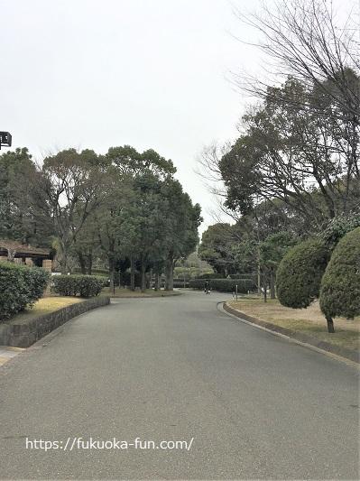 ゆっくり走れる公園 福岡
