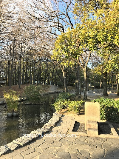 福岡 公園 散歩におすすめ