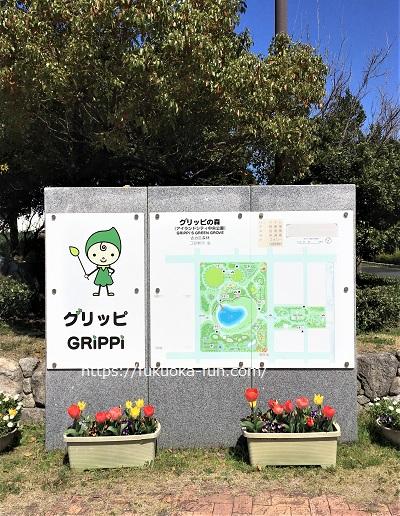 花の多い公園 福岡