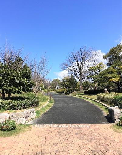 福岡 公園 ウォーキング