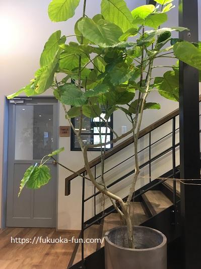 フルフル風の森 個室