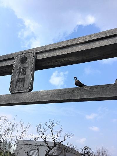 鉄道神社 博多