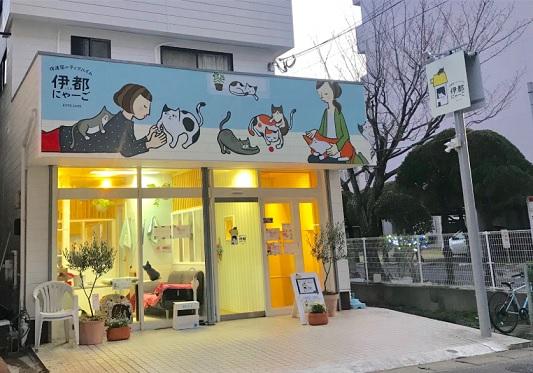 福岡市 猫カフェ おすすめ